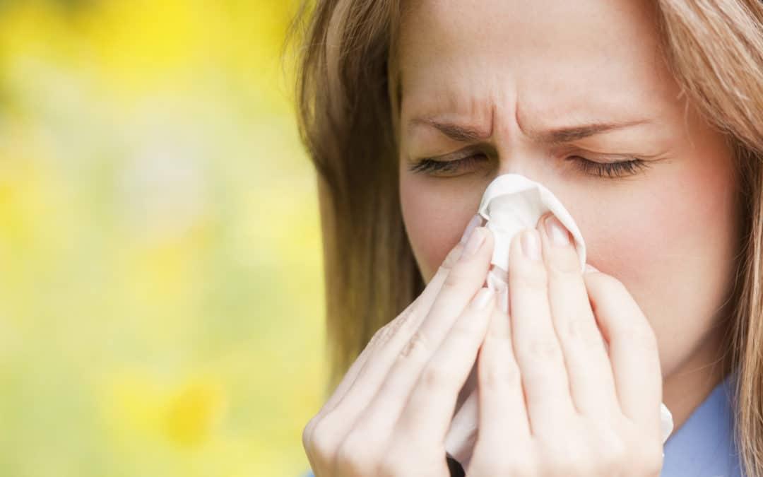 Guide de survive contre les allergies saisonnières